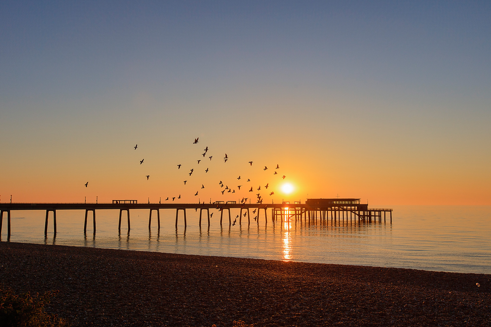 Flock of birds soaring past the sun rising over the sea and pier of Deal, Kent UK