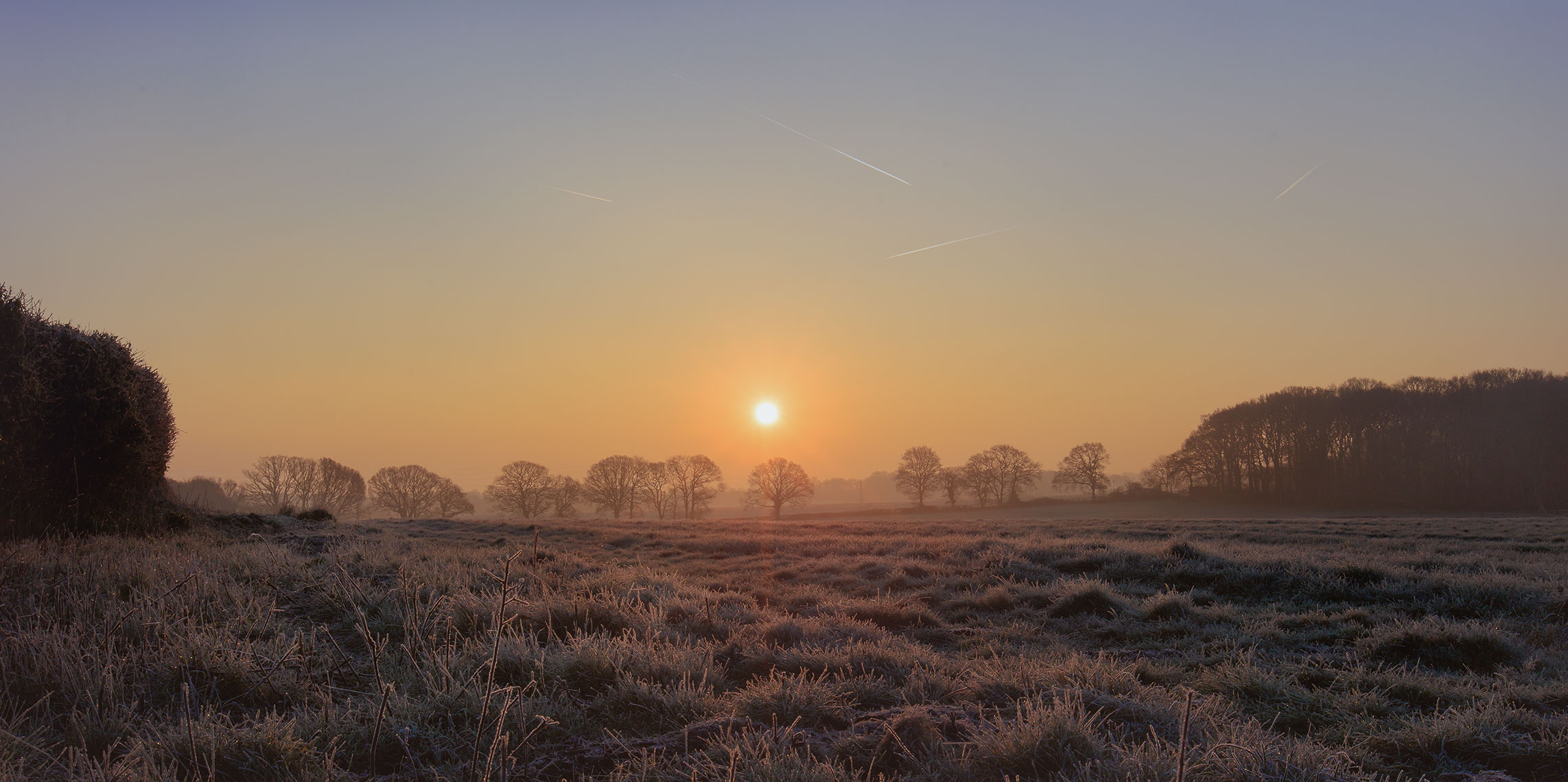 Early morning sunrise with frosted grass and trees in the distance of Hampshire, UK